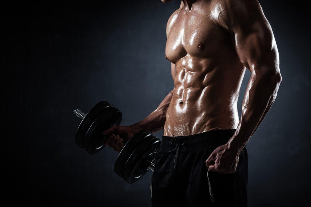 Male and Female Muscle Gain
